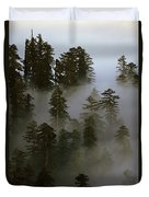 Redwood Creek Overlook With Giant Redwoods Sticking Out Above Lo Duvet Cover