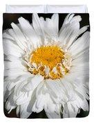 Shasta Daisy Named Paladin Duvet Cover
