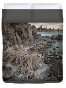 Tufa Formations, Mono Lake, Ca Duvet Cover