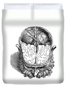Vesalius: Brain, 1543 Duvet Cover