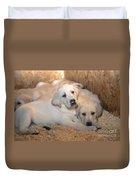 Yellow Labrador Retriever Puppies Duvet Cover