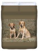 Yellow Labrador Retrievers Duvet Cover