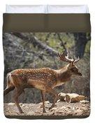 Mesopotamian Fallow Deer  Duvet Cover