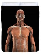 Muscles Of The Upper Body Duvet Cover