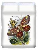 The Butterfly Vivarium Duvet Cover