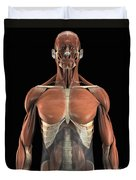 The Psoas Muscles Duvet Cover