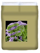 Methicillin-resistant Staphylococcus Duvet Cover by Science Source