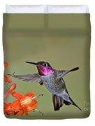 Annas Hummingbird Duvet Cover