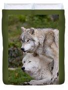 Arctic Wolves Duvet Cover