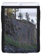 Devils Postpile National Monument Duvet Cover