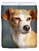 Portrait Of A Chihauhua Mix Dog Duvet Cover