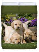 Yellow Labrador Puppies Duvet Cover