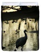 Common Cranes At Gallocanta Lagoon Duvet Cover