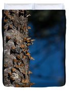 Monarch Butterflies Duvet Cover