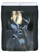 8 Point Buck With Sunset Duvet Cover
