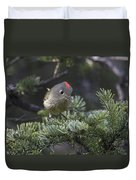 Rubycrowned Kinglet Duvet Cover