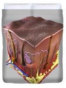Anatomy Of Human Skin Duvet Cover