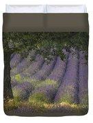 Lavender Field, France Duvet Cover