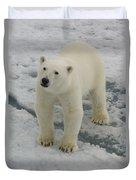 Polar Bear Crossing Ice Floe Duvet Cover