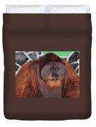 Portrait Of A Large Male Orangutan Duvet Cover