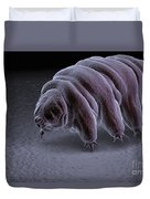 Water Bear Tardigrades Duvet Cover