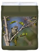 Yellowrumped Warbler Duvet Cover
