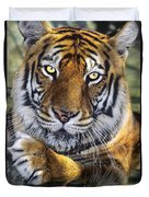 A Bengal Tiger Portrait Endangered Species Wildlife Rescue Duvet Cover