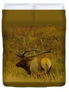 A Big Bull Elk Duvet Cover