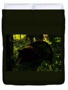 A Black Bear Duvet Cover