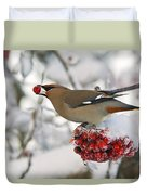 A Bohemian Waxwing Feeding On Mountain Duvet Cover