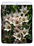 A Bouquet Of Miniature Tulips Celebrating The Spring Season - Vertical Duvet Cover