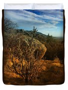 A Cactus In The Sandia Mountains Duvet Cover