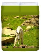 A Goat Coming Down The Trail Duvet Cover