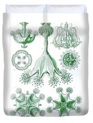 A Collection Of Stauromedusae Duvet Cover