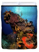 A Colorful Reef Scene With Sunburst Duvet Cover