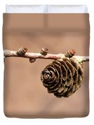 A Conifer Cone On A Tree Branch Duvet Cover