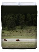 A Couple Of Horses Standing Duvet Cover