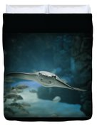 A Crownose Ray Rhinoptera Bonasus Duvet Cover