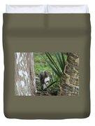 A Curious Squirrel Duvet Cover