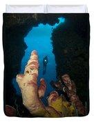A Diver Looks Into A Cavern Duvet Cover by Steve Jones