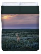 A Female Cheetah, Acinonyx Jubatus Duvet Cover