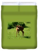 A Fine Little Fawn Duvet Cover by Lori Tambakis