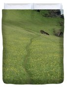 A Footpath Above The Cliff Duvet Cover