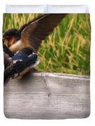 A Fourth Baby Barn Swallow Wants In On Lunch Duvet Cover
