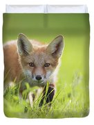 A Fox In The Grass  Montreal, Quebec Duvet Cover