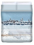 A Gathering Of Pelicans Duvet Cover