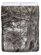 A Gentleman Sitting Beneath A Large Native Tree In British Ceylon Duvet Cover