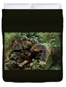 A Giant Falls - Life Emerges Duvet Cover
