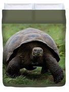 A Giant Tortoise Walks Along The Rim Duvet Cover