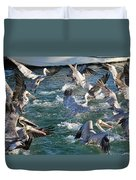 A Group Of Pelicans Duvet Cover